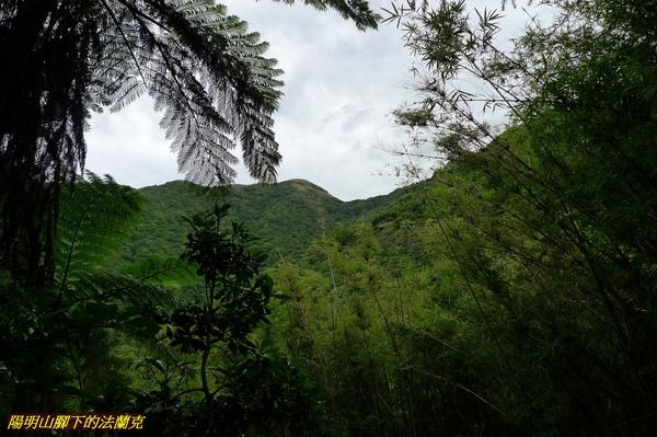20090927 中正山 (20).jpg