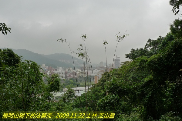 P1000665.jpg