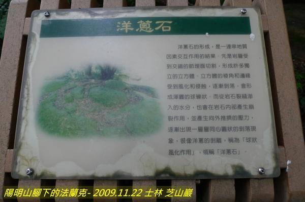 P1000667.jpg