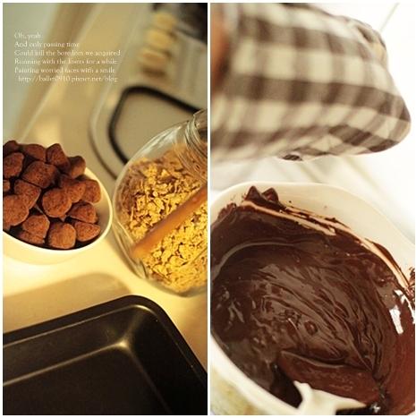 巧克力脆片11-1.JPG