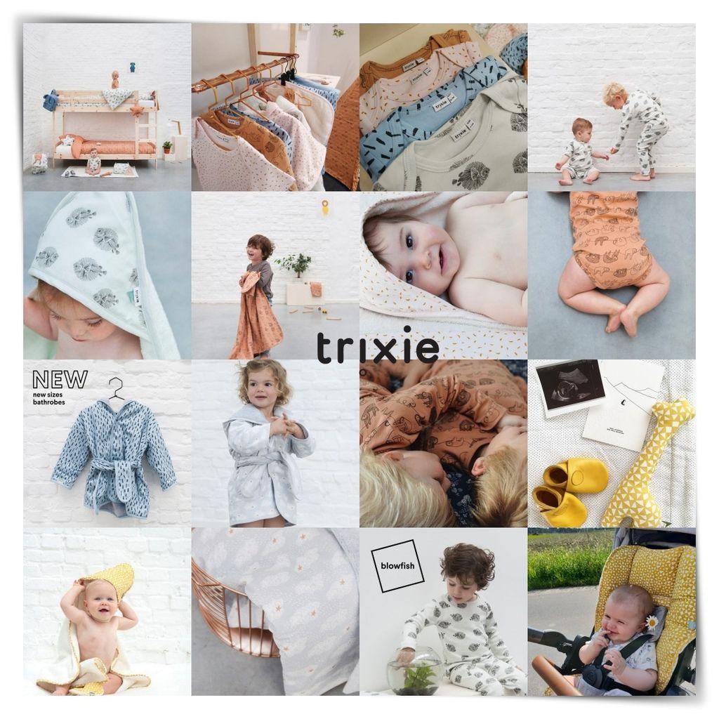 trixie.baby_41039916_298344064288230_5926148732237425264_n.jpg__nc_ht=instagram.ftpe9-1.fna.fbcdn.net-tile.jpg