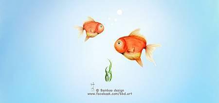 [bbd]我的魚缸