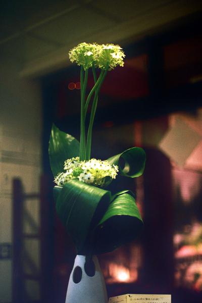 哲維厲害的花藝創作