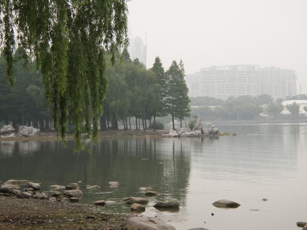 池畔的美麗