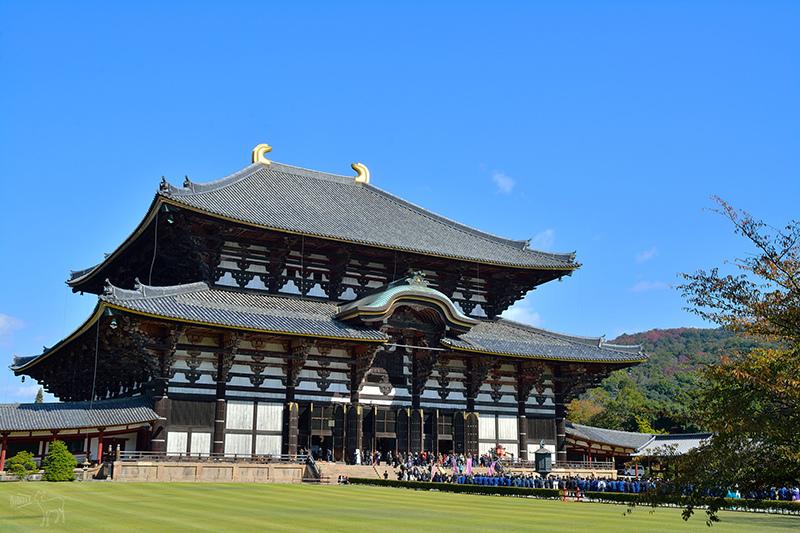 東大寺:有鹿圍繞的世界遺產,奈良一日遊景點交通,奈良公園與商店街