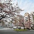 JAP_8345.jpg