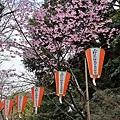 JAP_8375-2.jpg