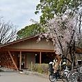 JAP_8429.jpg