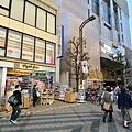 JAP_8628.jpg