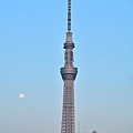 JAP_8712.jpg