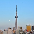 JAP_8711.jpg