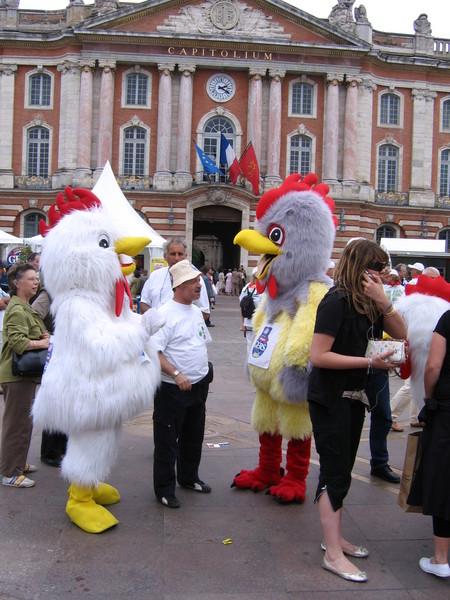 雞肉促銷大會