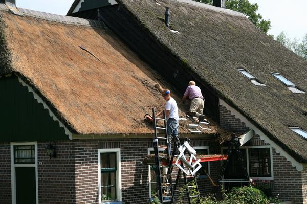 屋頂整理及換新工程