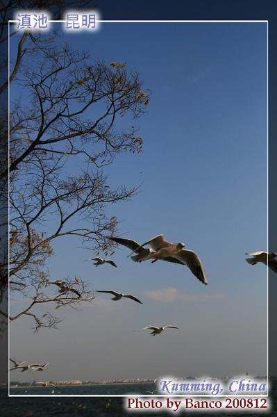 滇池海埂公園