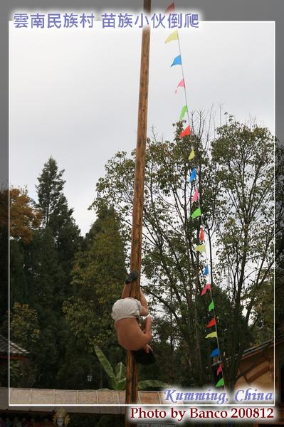 雲南民族村苗族小伙倒爬木竿