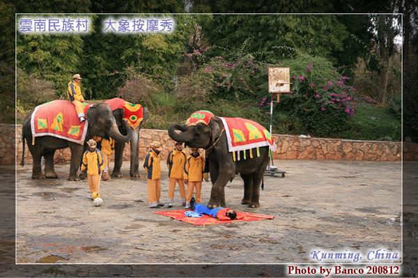 雲南民族村大象表演按摩