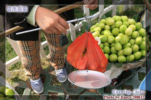 金馬碧雞坊農婦賣的棗子