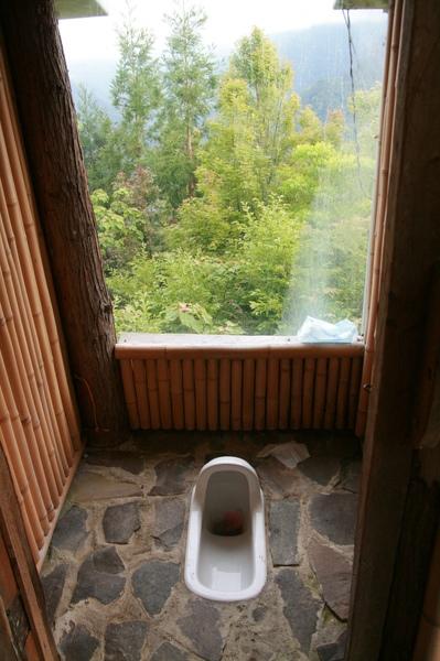 令人神清氣爽的廁所 I