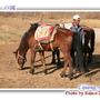 拉巿海騎馬
