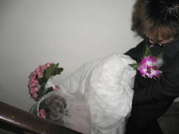 新娘的裙擺