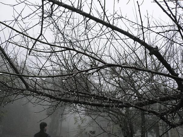 2005.12.11霞喀羅古道之旅