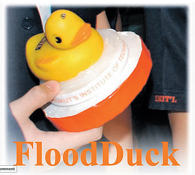 flood duck.jpg