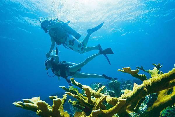 Breezes-scuba-diving