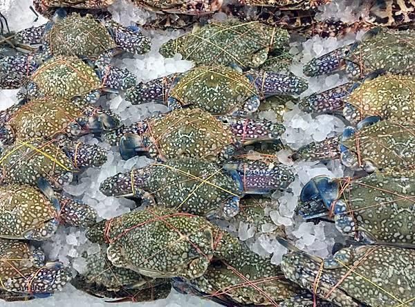 seafood2-9