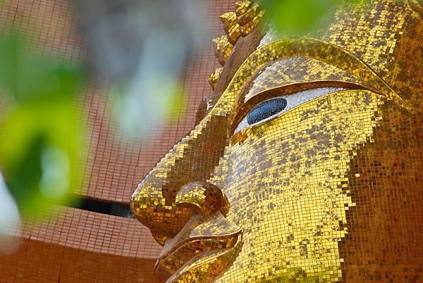 images-image-of-buddha-12105.jpg