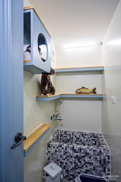 挑高夾層裝潢設計-不說還以為在國外!貓奴的輕法式夾層寵物宅17.jpg