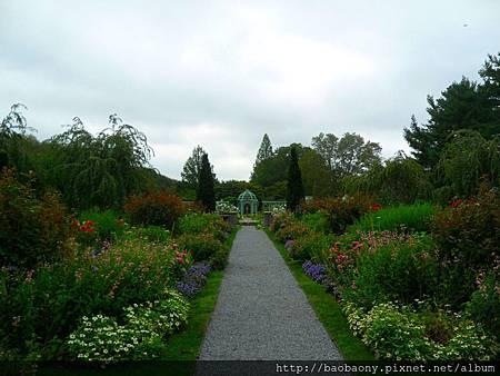 110905 Westbury garden 019