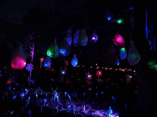 150502 m lightscapes (111).JPG