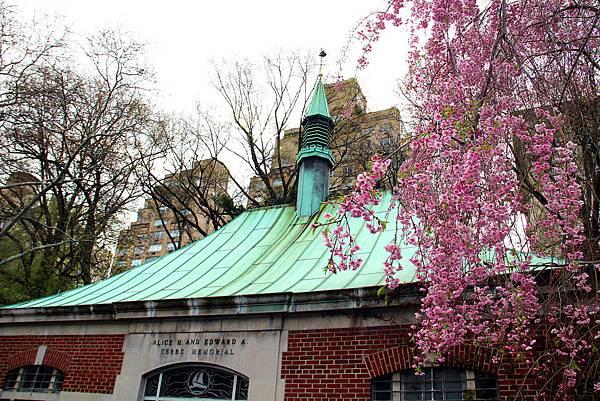 180429 nyc central park (99).jpg