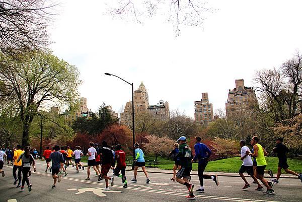 180429 nyc central park (222).jpg