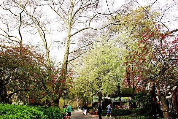 180429 nyc central park (227).jpg