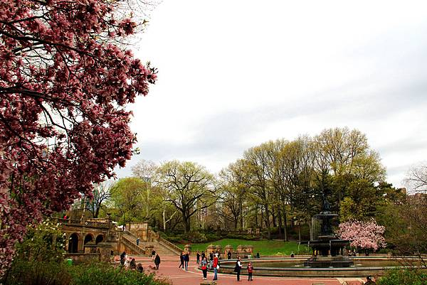 180429 nyc central park (282).jpg