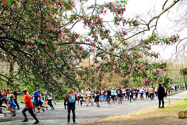 180429 nyc central park (230).jpg