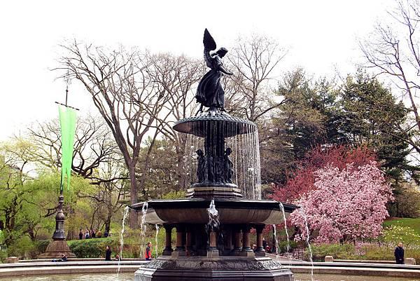 180429 nyc central park (314).jpg