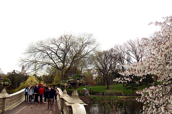 180429 nyc central park (380).jpg