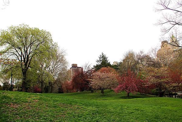 180429 nyc central park (406).jpg