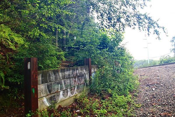 180818 trail view (43).JPG