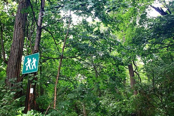 180818 trail view (17).JPG