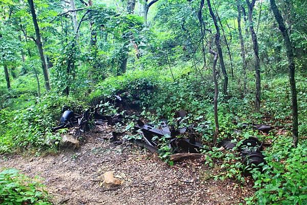 180818 trail view (25).JPG