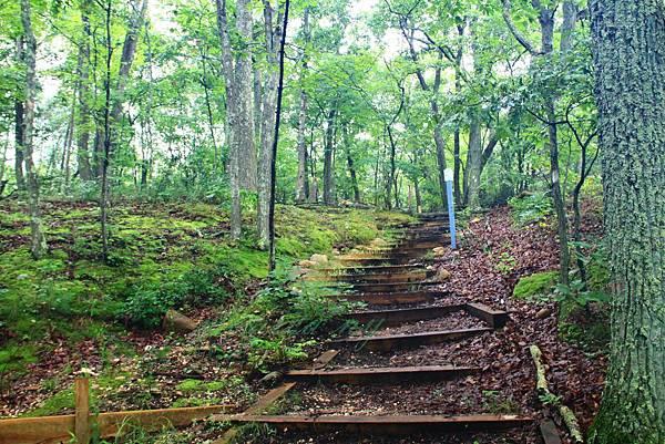 180818 trail view (32).JPG