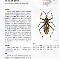 阿寶簡體書店『園藝栽培』…中國林木害蟲天地昆蟲-內頁