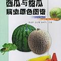 阿寶簡體書店『園藝栽培』…西瓜與甜瓜病蟲原色圖譜——無公害蔬菜病蟲鑒別與治理叢書