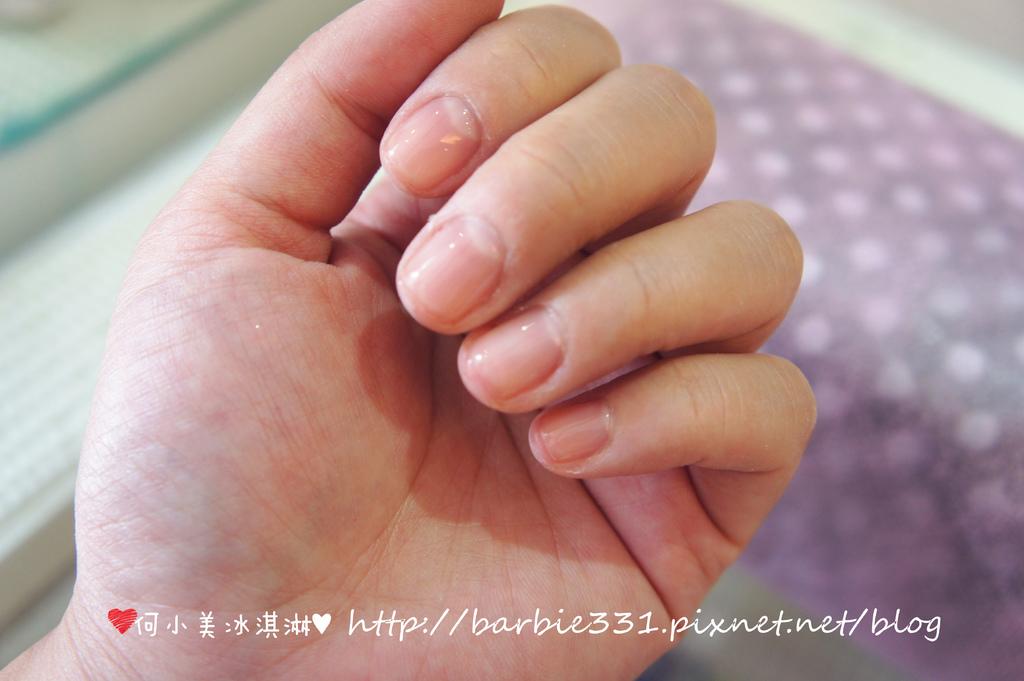 DSC01279 .jpg