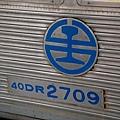 DSC_7935.JPG