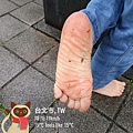 脫掉鞋子世界就變得不一樣,赤腳走路永遠會帶來愉快的心情。