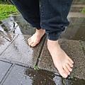 赤腳走路 預防疾病 20201223